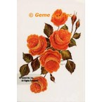 Orange Rose  - #SOR63  -  PRINT