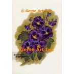 Deep Purple Pansies  - #SOR64  -  PRINT