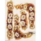 Daisy Cluster  - #SOR9  -  PRINT