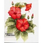 Red Hibiscus  - #SOR92  -  PRINT