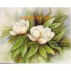 Magnolias  - #SOR98  -  PRINT