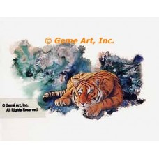 Awake & Alert Tiger  - LOR400  -  PRINT