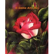 Love Rose  - IOR1  -  PRINT