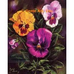 Purple Yellow Pansies  - #IOR10  -  PRINT