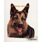 German Shepherd  - #IOR103  -  PRINT