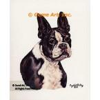 Boston Bull Dog  - #IOR112  -  PRINT