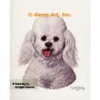 Minature Poodle  - #IOR116  -  PRINT
