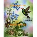 Broadbill Hummingbird  - IOR154  -  PRINT