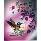 Hummingbird & Fuchsias  - IOR155  -  PRINT