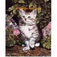 Cat & Geraniums  - #IOR160  -  PRINT