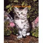 Cat & Geraniums  - IOR160  -  PRINT