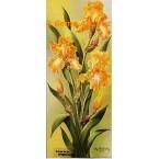 Yellow Iris  - IOR168  -  PRINT