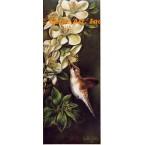 Hummingbird  - IOR20  -  PRINT