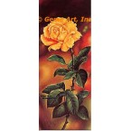Belle Blonde Rose  - #IOR23  -  PRINT