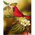 Cardinal With Magnolia  - IOR27  -  PRINT
