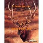 Elk  - #IOR29  -  PRINT
