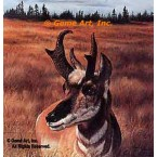 Prong Horned Antelope  - #IOR32  -  PRINT