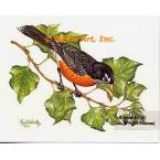 Robin  - IOR59  -  PRINT