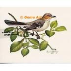 Mockingbird  - IOR61  -  PRINT