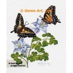 Butterflies & Columbine  - #IOR72  -  PRINT