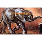 Elephants  - #ZORZB706-1  -  PRINT