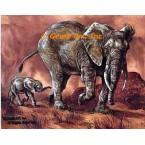 Elephants  - #ZOR706  -  PRINT