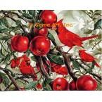 Cardinals & Apples  - #ZOR720  -  PRINT