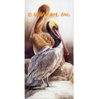 Pelicans  - #UOR17  -  PRINT