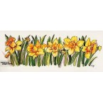 Row of Daffodils  - #TOR632  -  PRINT