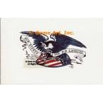 Liberty Eagle  - #TOR910  -  PRINT