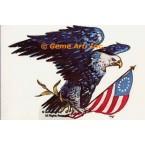 American Eagle  - TOR911  -  PRINT