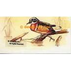 Wood Duck  - #TORT2007  -  PRINT