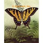 Butterfly & Fern  - #TOR2010  -  PRINT
