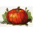 Pumpkin  - #TOR221  -  PRINT