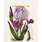 Lavender & Purple Iris  - TOR239  -  PRINT