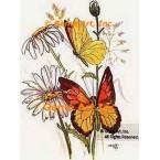 Butterflies & Daisies  - #TOR280  -  PRINT