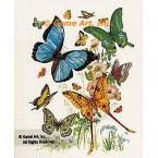 Butterflies  - #TOR856  -  PRINT
