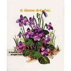Violets  - #TOR276  -  PRINT
