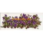 Violet Garden  - #TOR614  -  PRINT