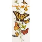 Butterflies  - #TOR619  -  PRINT