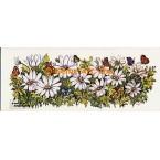 Butterflies in Daisies  - #TOR616  -  PRINT