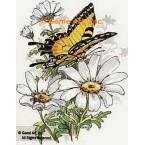 Butterflies & Daisies  - #TOR982  -  PRINT