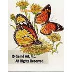 Butterflies  - #TOR4042  -  PRINT