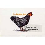 Chicken  - #TOR4067  -  PRINT