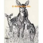 Deer  - #TOR443  -  PRINT