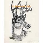 Deer  - #TOR444  -  PRINT
