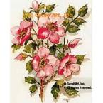 Wild Roses  - TOR2014  -  PRINT