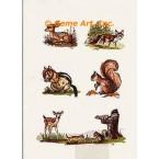 Wildlife Cluster  - #TOR705  -  PRINT