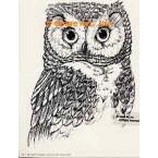 Owl  - #TOR793  -  PRINT
