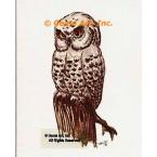 Owl  - #TORT806  -  PRINT